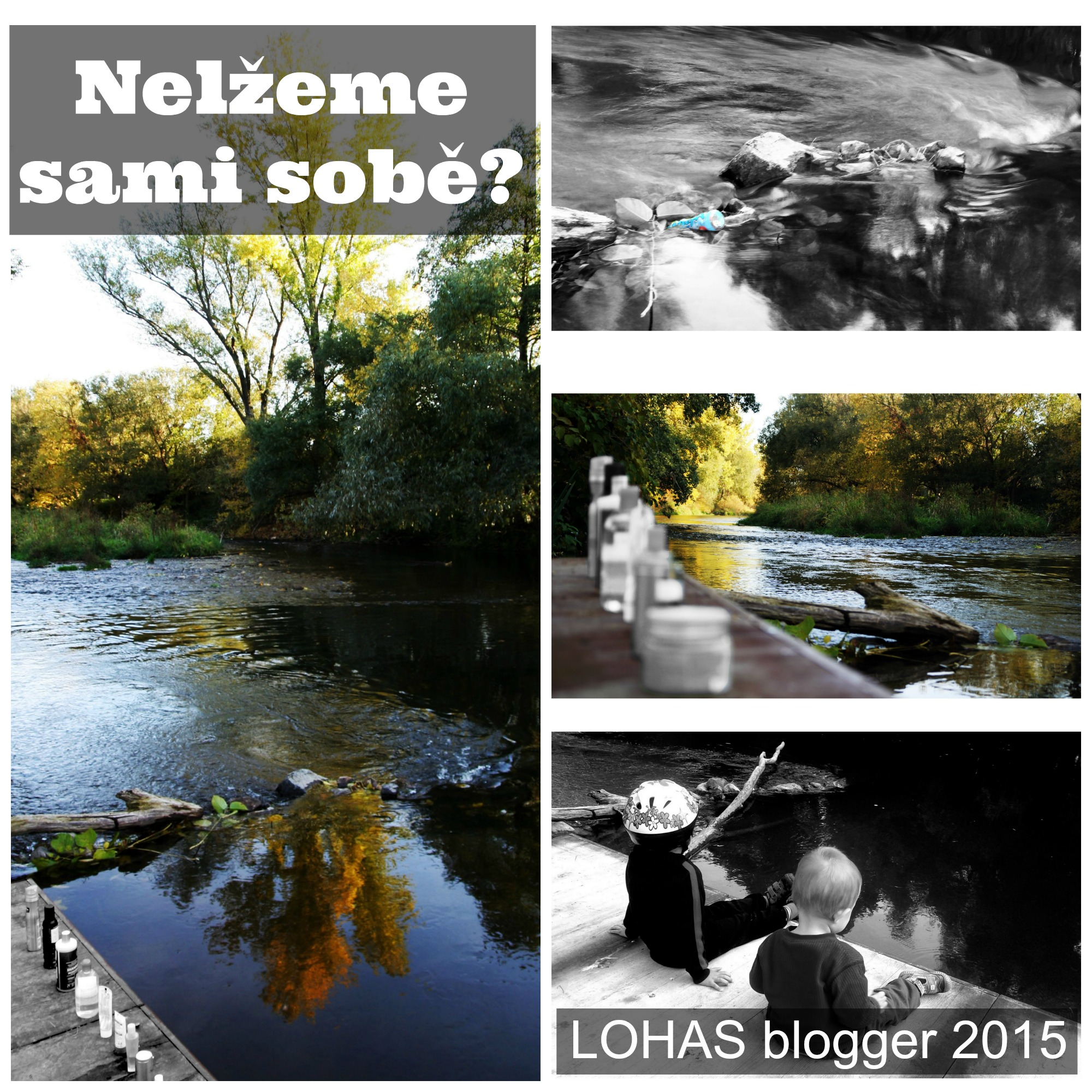 LOHAS blogger 2015